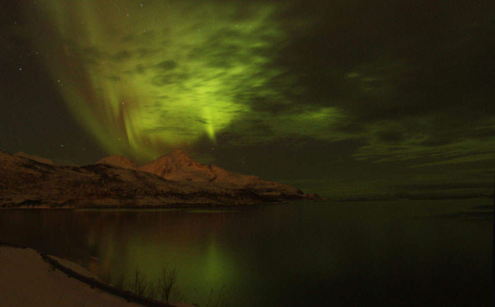 Northern Lights Near Tromso374