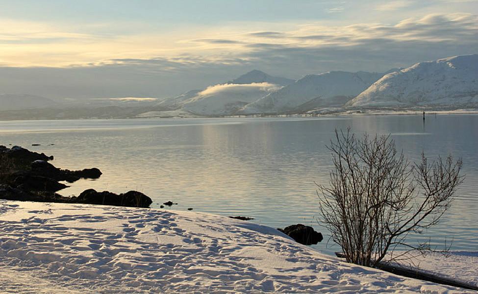 Tromso 387